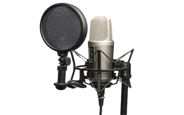 Voice Over Translation Service